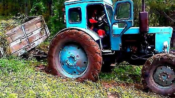 Трактор вездеход Т-25 по бездорожью