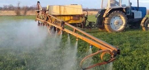 Полив озимой пшеницы