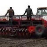 Посев ячменя
