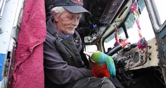 Старик - дальнобойщик с попугаем
