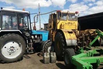 Трактор Кировец сеет нут
