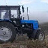 Подготовка почвы под посев пшеницы после подсолнуха