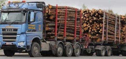 Лесовозы Sisu и другая техника для лесозаготовки