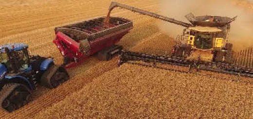 Уборка пшеницы в Канаде