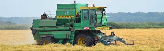 Уборка риса в Краснодаре