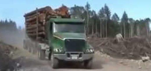 Зарубежные лесовозы на бездорожье