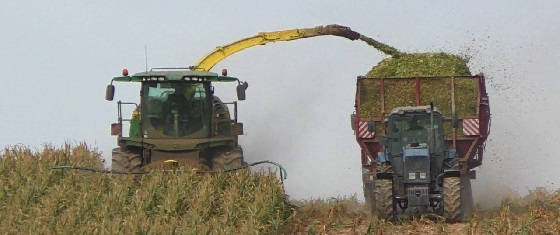 John Deere 8300 на уборке кукурузы