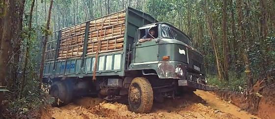 Иностранные лесовозы на бездорожье
