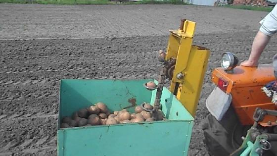 Посадка картофеля картофелесажалкой