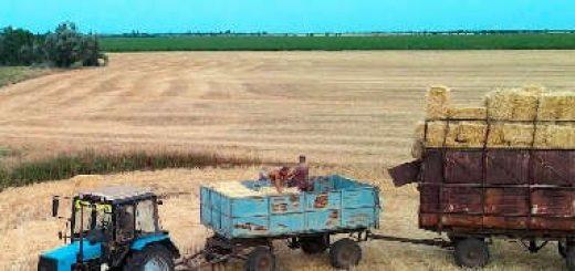 Погрузка тюков соломы ярового ячменя с поля