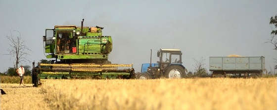 комбайн ДОН 1500Б на уборке пшеницы