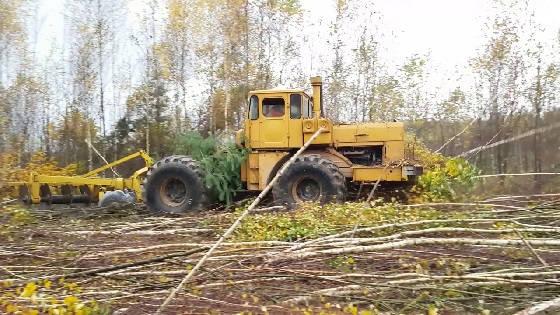Восстановление залежных земель